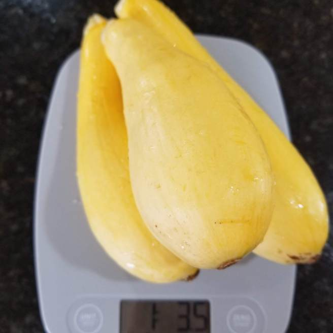 Weighing the squash